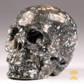 17/12 crâne de jaspe léopard, crâne de jaspe orbiculaire, Crâne de guérison