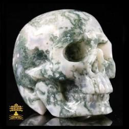 17/16 Superbe Crâne en Agate mousse. Crâne de méditation, abondance, longévité.