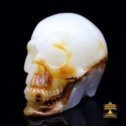 17/23 Superbe crâne en jaspe mokaïte (jaspe afghan). Crâne De changement et de sérénité.