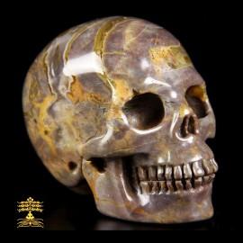 17/25 Crâne en Agate œuf de dinosaure. Crâne d'ancrage et de mémoire cellulaire.