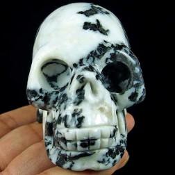 1519 Crâne en Jaspe Zébre. Crâne de guérison