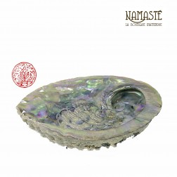 Coquille Abalone 14/15 cm pour encens et fumigation sauge